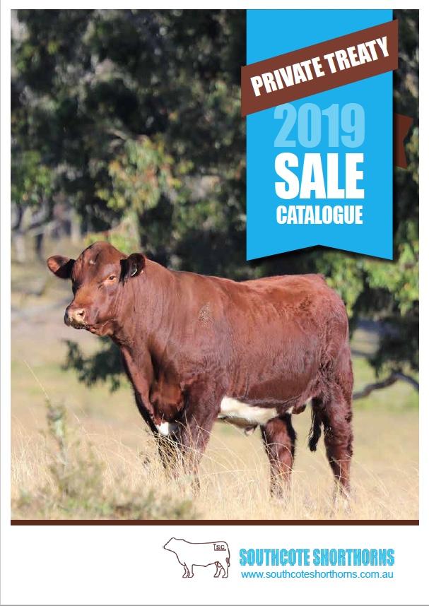 Southcote 2019 Sales Catalogue